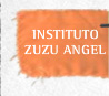 instituto zuzu angel