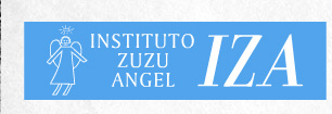 instituto zuzu angel - iza